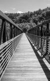 Footbridge James River стоковые изображения