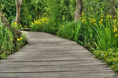 Footbridge in Krka National Park, Croatia, Royalty Free Stock Photos