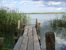 Footbridge at the lake. Summer landscape with the footbridge for fishing at the lake, Tverskaya region, Russia Stock Photography