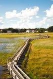Footbridge on a lake Stock Photo