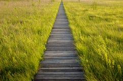 Footbridge through the Lawki swamp in Biebrza National Park Stock Photo