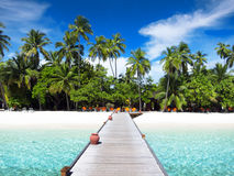 Footbridge, Maldives Obraz Stock