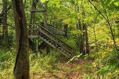 Footbridge na Appalachian śladzie Obraz Royalty Free
