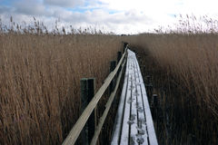 Footbridge. In the Nature Reserve at famous Bird-Lake Tåkern in Southern Sweden, in Winter-time Stock Photo