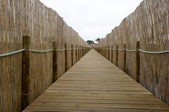 Footbridge ochrona natura obraz royalty free