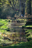 Footbridge over a Cypress Swamp Royalty Free Stock Photo