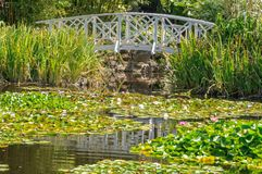 Footbridge over the Lily Pond - Hobart Royalty Free Stock Images