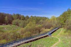 Footbridge over the marshy ravine. Royalty Free Stock Photos