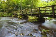 Footbridge over river royalty free stock image