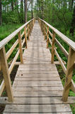 Footbridge over the swamp Royalty Free Stock Photo