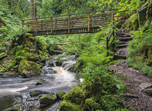 Footbridge over waterfalls on the River Esk Royalty Free Stock Photos