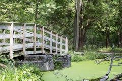 Footbridge Over a Woodland Pond Royalty Free Stock Photos