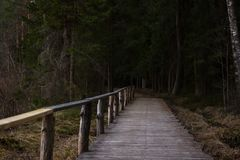Footbridge Path Leading Deeper into the Forest, Moody Photo. On a late Spring Evening Royalty Free Stock Photography