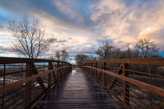Footbridge After Rain stock photos