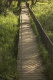 Footbridge. The shadow of the railing on an old wooden footbridge Stock Image
