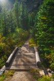Footbridge on String Lake Trail Stock Photo