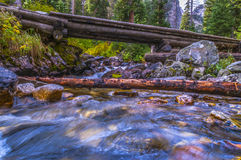 Footbridge on String Lake Trail Royalty Free Stock Photo