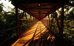 Footbridge sunrise C Stock Image