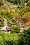 Footbridge trees in a Japanese garden stock images