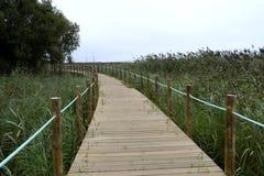 Footbridge w ochraniającym rezerwacie przyrody zdjęcia stock