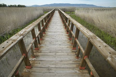 Footbridge walkway. Wetland landscape. Tablas de Daimiel. Ciudad Royalty Free Stock Images
