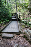 Footbridge by a Wild Mountain Stream. Footbridge located by a wild mountain stream located in the Blue Ridge Mountains of Virginia, USA Royalty Free Stock Photos