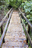 Footbridge Royalty Free Stock Photos