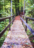 Footbridge Royalty Free Stock Photography