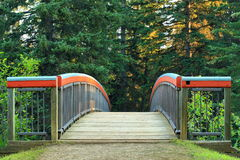 Footbridge in the Woods Stock Images