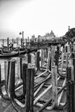 Footbridges in Venice. Black and White Stock Photos