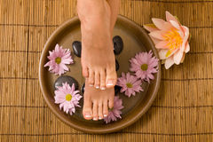 Free Footcare And Pampering Stock Photos - 8930543
