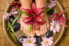 Free Footcare And Pampering Stock Photo - 9124880