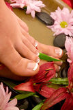 Footcare e pampering fotografia de stock