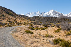 Foothill of mt. Cook at spring, New Zealand Stock Image