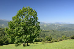 Foothills of the French Pyrenees Stock Photography