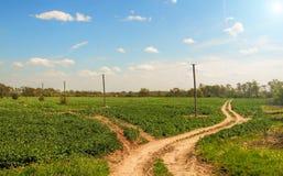 Foothills. Landscape in foothills of the Carpathians. Ukraine Royalty Free Stock Images