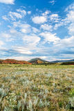 Foothills of Rocky Mountains in Colorado Stock Image