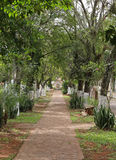 Foothpath in Aregua, Paraguay Stock Photography