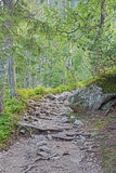 Foothpath in High Tatras mountains. Slovakia Royalty Free Stock Photography