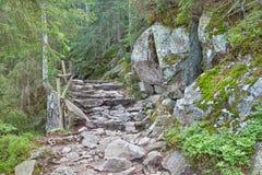 Foothpath in hohen Tatras-Bergen Stockfotos