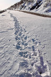 Footmark. The footmarks in the snow road Royalty Free Stock Photography