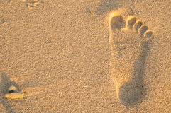 Footmark on beach. One footmarl on beach in evening at Panwa cape, Phuket, Thailand Royalty Free Stock Photography