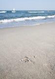 Footmark i sanden Royaltyfri Foto