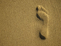 Footmark in Sand. Foot-mark in Sand on the Beach Stock Images