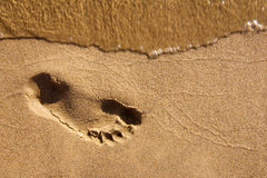 Footmark on wet send. Foot trace on  the beach Stock Photo