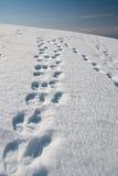 footmarks Στοκ Εικόνες