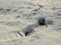 Footmarks in the snow. Footsteps in the snow - hiking in winter Royalty Free Stock Image