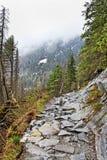 Footpash w Tatras. Fotografia Stock