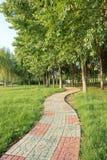 Footpath и hurst Стоковая Фотография