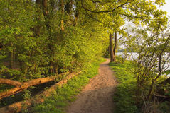 Footpath Stock Images
